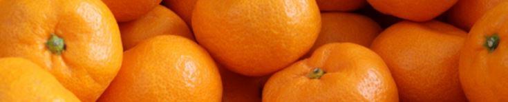 CitriSlim®柑橘幼果萃取