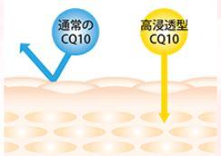 豐麗EX 高滲透型輔酶