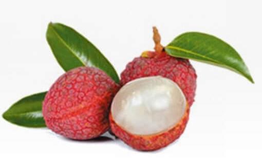 來自荔枝的水果酵母進一步助你排便。