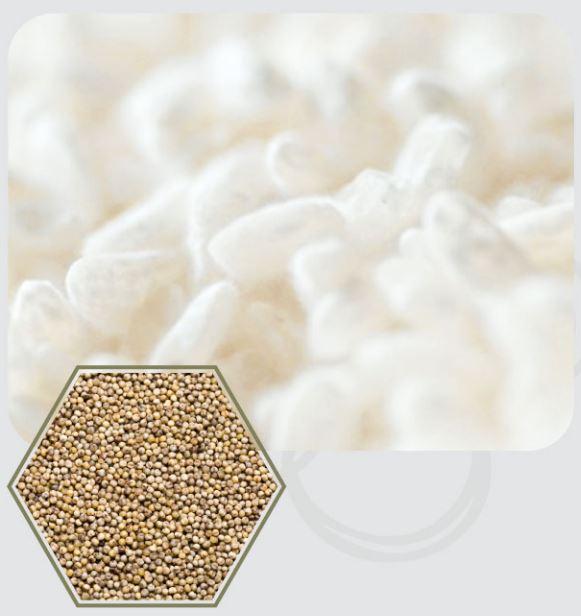 「悠悠館麹酵素」完整補給活酵素