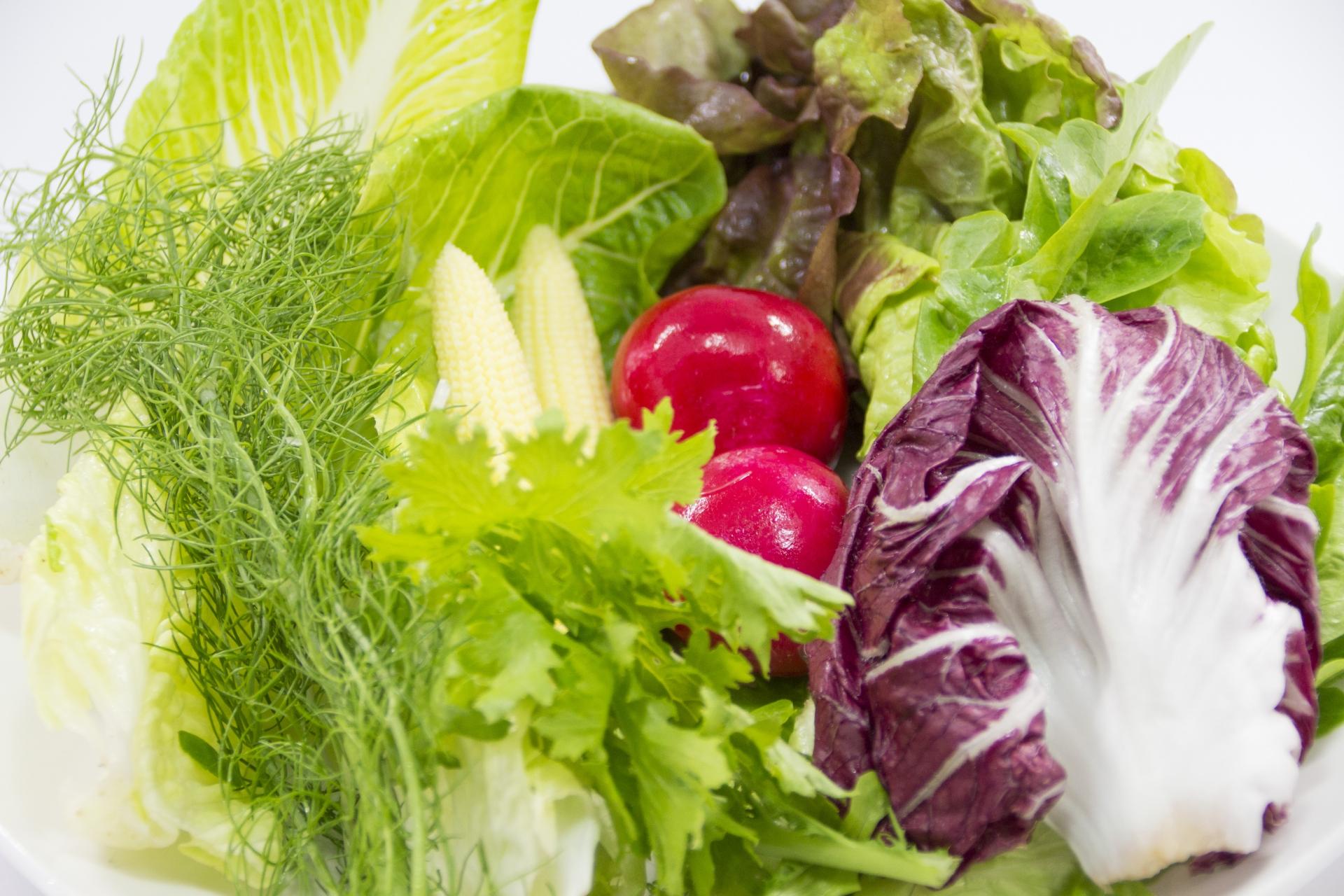 【能幫助減肥的正確吃飯順序】1 食物纖維(纖維質)