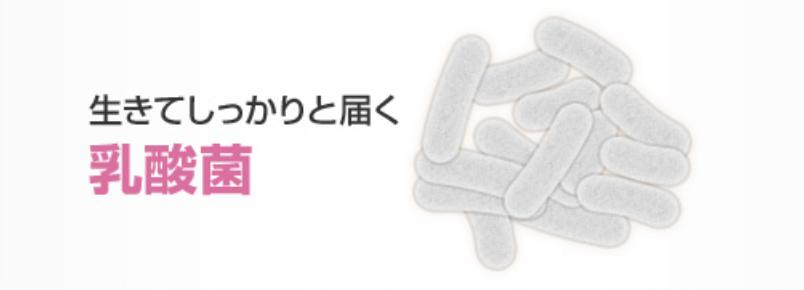 然後就是改善腸道環境的乳酸菌。