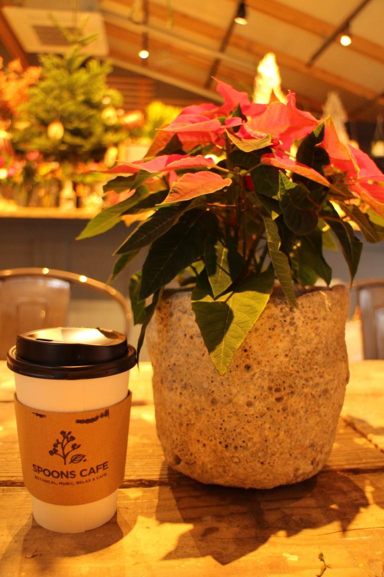 大阪天王寺公園 SPOONS CAFE010
