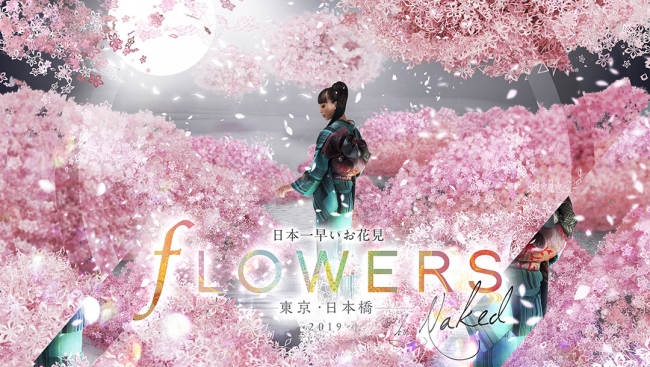 flowers-by-naked001