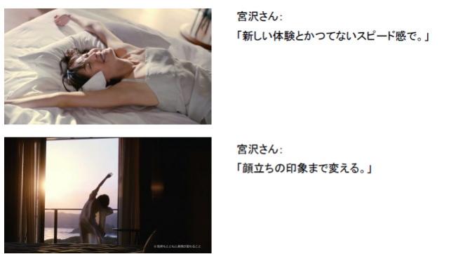 shiseido-micro-needle-sheet03
