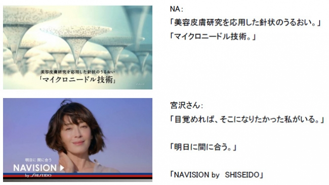 shiseido-micro-needle-sheet04