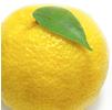 柚子神經酰胺
