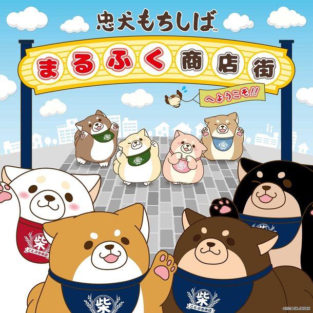 chuken-mochishiba01