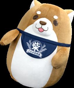 chuken-mochishiba05