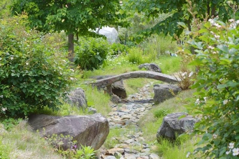 綠意盎然的夏季香草花園
