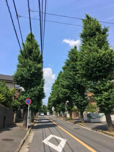 東急田園線的宮前平站