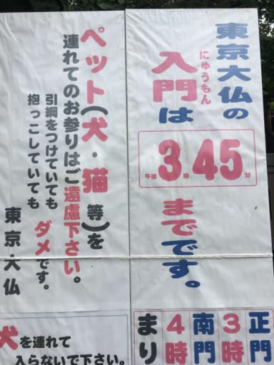 東京大佛 乘蓮寺 入門時間